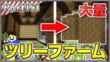 【マインクラフト】木材が無限!ついに和風ツリーファームが完成した!!洞窟生活クラフト! - 実況 Part151【かーぼん】