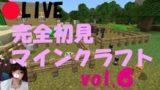 vol.6☆PS4【MINECRAFT】ほりほり。ひたすら。ほりほり【マインクラフト】