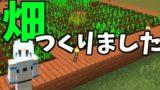 【バビクラ】Part 5 - ようやく畑を作りました! 【マインクラフト】